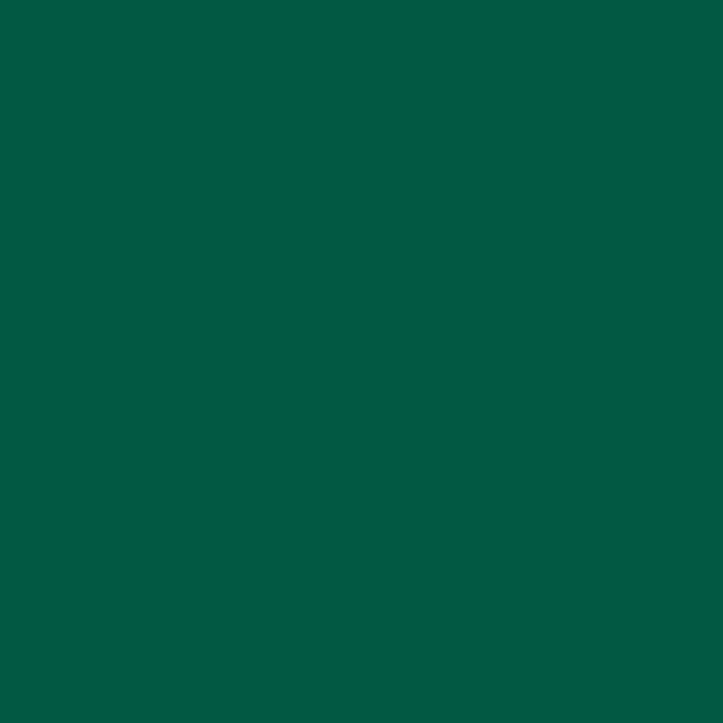 12-1219 Dark Green Gloss 8 Year Permanent Adhesive 1220mm