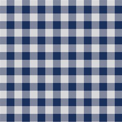500-EasyPattern Buffalo Plaid Blue 456mm x 1 Metre